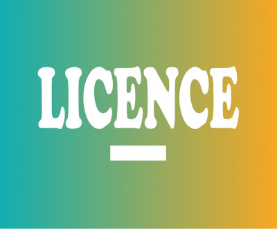 FORMATION LICENCE